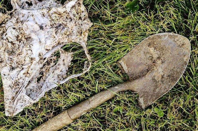Le sol raffole qu'on le cajole