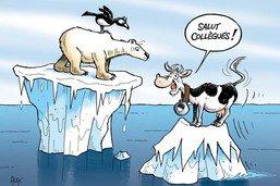 Plan climat: Fribourg veut promouvoir des îlots de fraîcheur